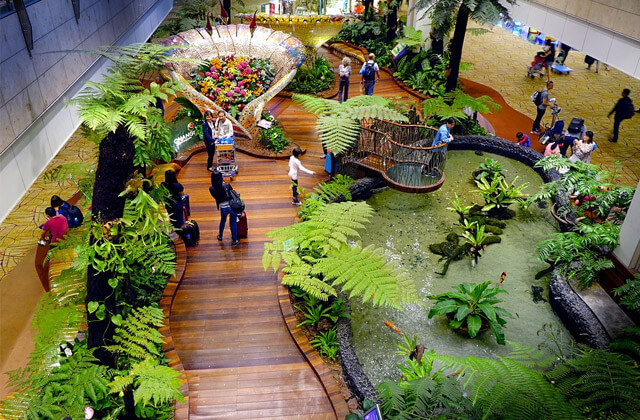 Jardin enchanté à l'aéroport International de Changi, Singapour