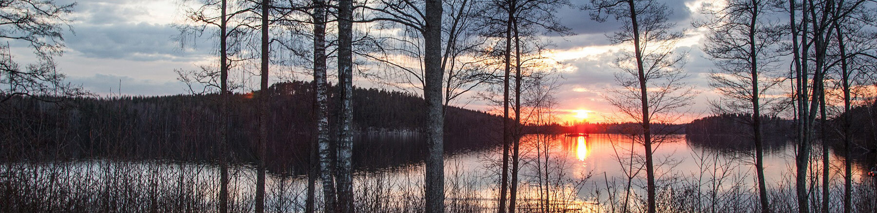 Lake and forest view in Finland at sunset