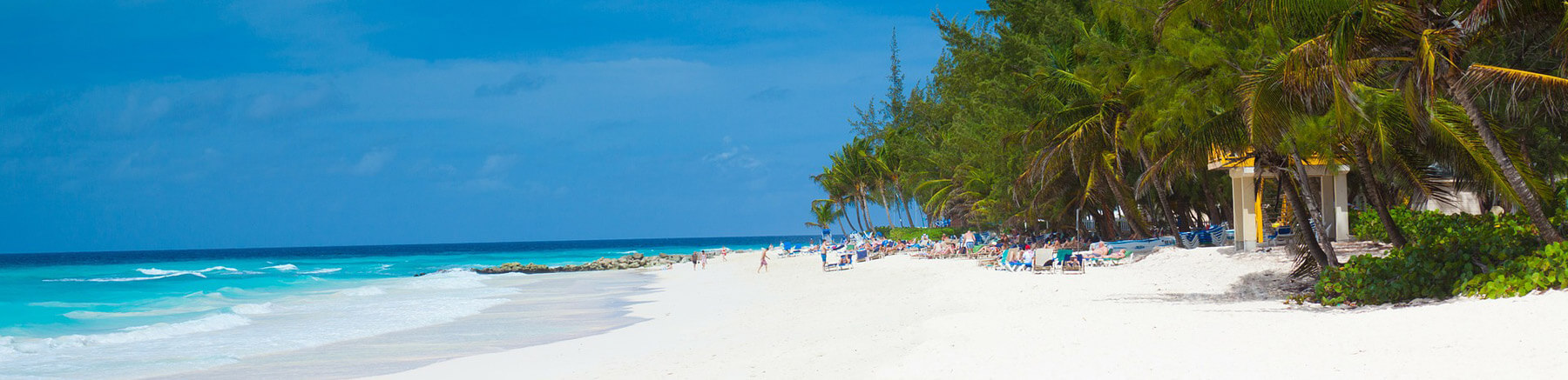 Beautiful white sand and turquoise water beach in Barbados with palm trees and some tourists