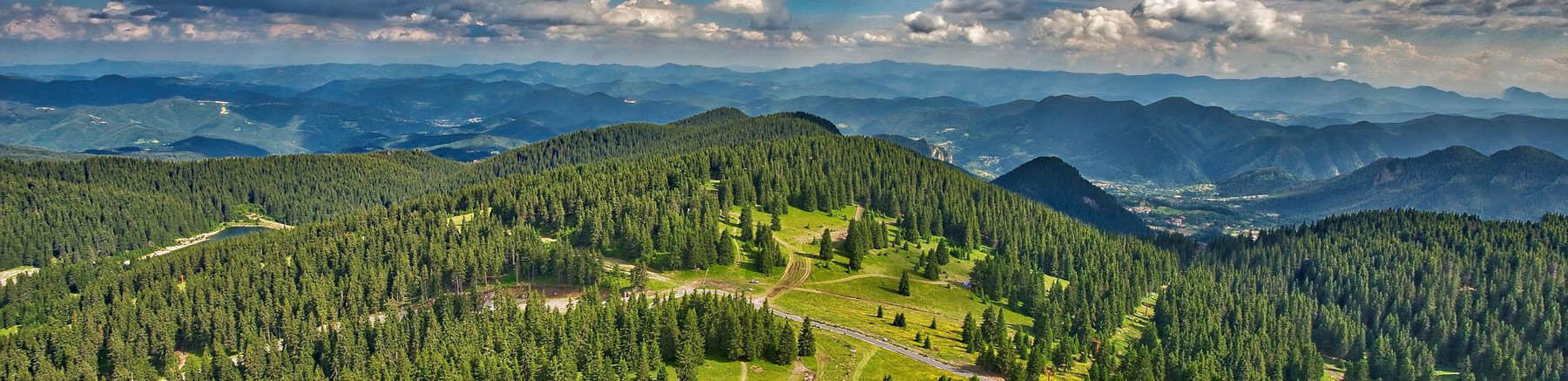 Beautiful aerial view of the forest in the Bulgarian mountains