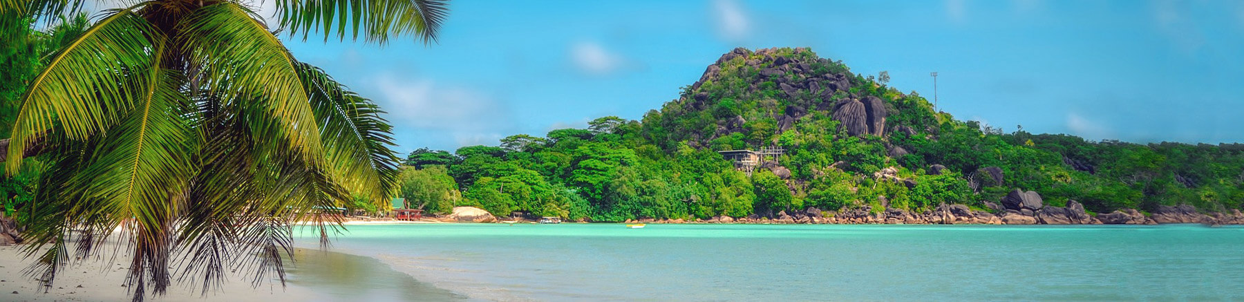 Beautiful beach in the Seychelles with turquoise water, a palm tree and big rocks